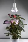 Airam Plantlampa inkl. ljuskälla